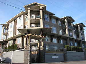 2 bed / 2 bath condo - Chilliwack - July 1 availability