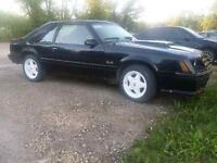 82 Mustang GT