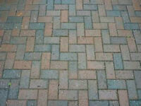Pavers / Patio stones