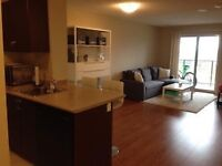 Beautiful brand new 1 bedroom plus den, 7 month lease