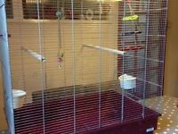 large and spacious parakeets / parrots bird cage only £50 bargain