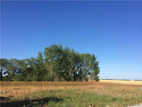 BUILD YOUR DREAM HOME IN LORETTE!!! FULLY SERVICED LOTS