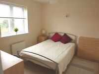TYBALT WAY, STOKE GIFFORD - Small double room to Rent , close to Aviva, MOD, Parkway Station