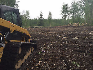 Tree Mulching, Land Clearing, Brush Cutting Strathcona County Edmonton Area image 2