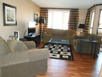 Gorgeous 2 bedroom condo overlooking Shelter Cove Marina