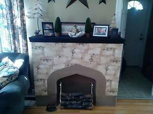 Fireplace with fake logs