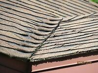 ^ROOFERS^ REPAIRS & INSPECTIONS 50% OFF CALL TODAY