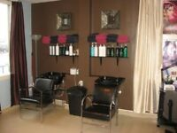 Independent Professional Stylist Required