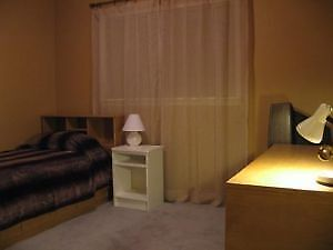 Room Rental for Student or Work Placement