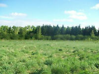 Beautiful acreage - build your dream home *Reduced*
