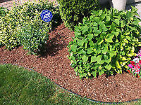 Lawn Care, Grass cutting and modeling, Cleaning, landscaping