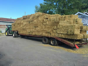 2016 small square straw bales