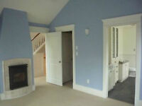 Experienced Painters-Transform Your Home Today