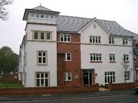 Modern Large 2 bed ground floor apartment - inc guest shower