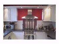 amazing 1 bedroom flat in balham with huge kitchen and private garden.