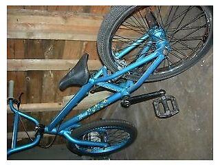 BMX Hofman Scarab 1L 2010 in mint condition