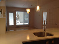 New condo 3 1/2 for rent-downtown Montreal
