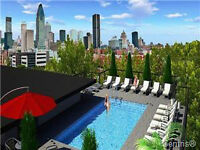 GRIFFINTOWN CONDO WITH GARAGE****ROOF TOP TERRACE***