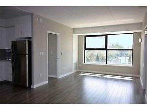 4 Bedrooms Available--Guelph Students--Solstice 1