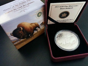 $ 100 Dollars Pure Silver 2013 Bison Coin