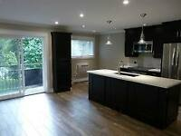 Experienced Drywall and Renovation Experts