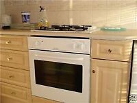 oven cooker fridge freezers central heating TV PC washing machine dryer cooker oven dish washer