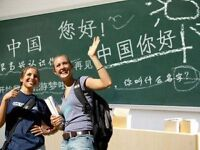 One to one, Maderine Chinese Teaching, Tutor for Chinese Examination