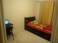 Female - Furnished Bedroom with Shared Kitchen & Washroom