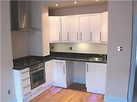 SHOREDITCH, HOXTON ,E2, WONDERFUL 3 DOUBLE BED APARTMENT WITH BALCONY