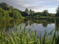 COME AND BE A VOLUNTEER AT SEVERN FARM POND NATURE RESERVE WELSHPOOL