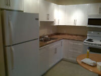 1 bedroom Renovated Condo, Close to U of A and River Valley