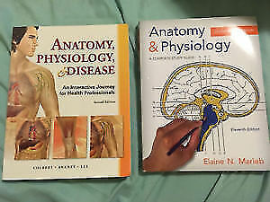 Selling Anatomy Physiology text book