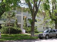 Prime Southside Large 1 Bdrm, , Utilities Included!