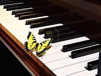 ☀☀QUALITY PIANO LESSONS VARIOUS LOCATIONS ADULTS SENIORS WELCOM