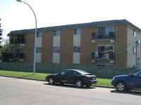 LARGE 1BR & 2BR near West Edmonton Mall (West End)