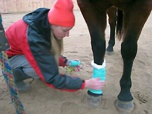 IT'S NOT IF, BUT WHEN!!! Equine Health & Emergency First Aid
