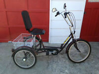 """Like New TriRider by Belize Bicycle"""