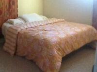 Kanata-Furnished basement room in a single house for rent now