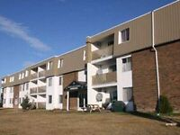 2-bedroom apartment - Avail Now - 144th Avenue