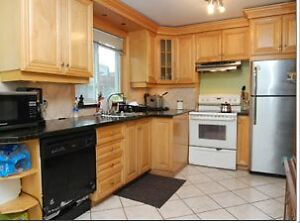 Beautiful Renovated Bungalow for rent- AVAILABLE NOV 1st