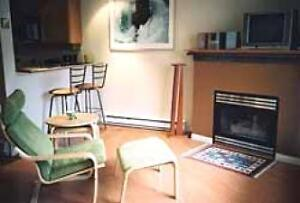 Kitsilano Studio Apartment - Patio Fireplace Gated Entrance #074 Downtown-West End Greater Vancouver Area image 3