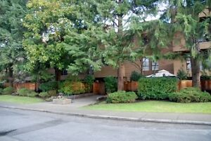 Bright Spacious Furnished 2 Bedroom Condo in Kits Point #694