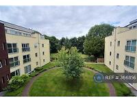 2 bedroom flat in The Dale, Sheffield, S8 (2 bed)