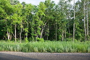 2 Acre RIVERFRONT Building Lot!