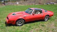 Looking for a '77 Pontiac Firebird Trans Am
