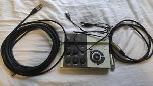 Steinberg CI2 with 24 ft & 3 ft XLR cables