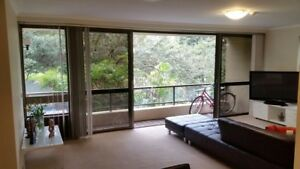 BEAUTIFUL FLAT TO SHARE WELL LOCATED Chippendale Inner Sydney Preview