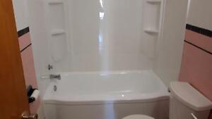 THE TUB GUY   BATHTUB REGLAZING $340.00 PLUS HST London Ontario image 9