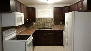 Fully renovated 2 bdrm apartment- avail Sept 1st