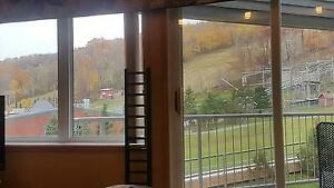 3 Bed Blue Mountain Slope Side Condo Sleeps 8